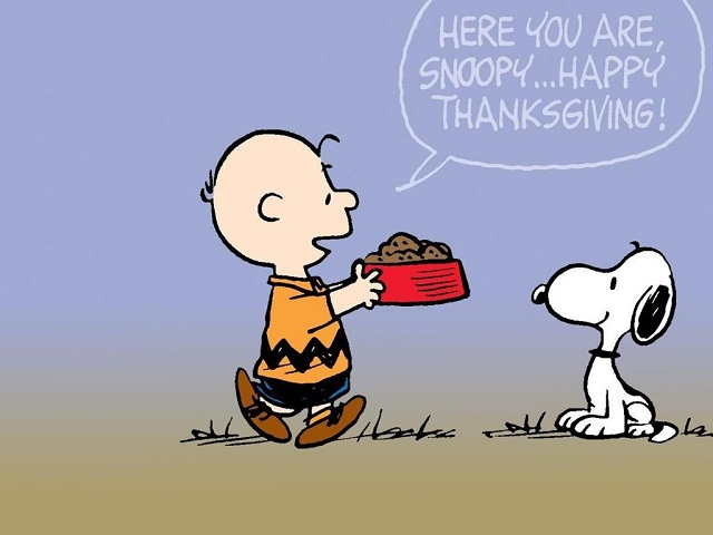 Snoopy Thanksgiving Background Images