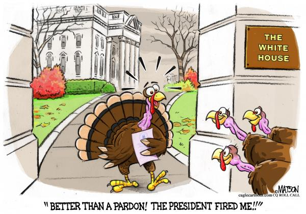 Thanksgiving Turkey Cartoon Images